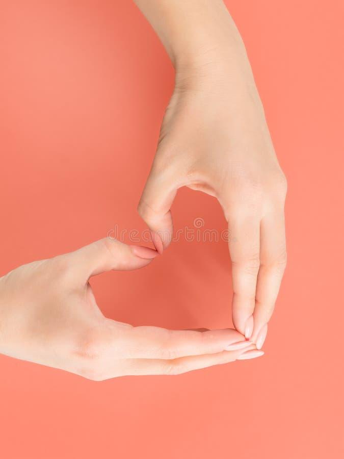 Mãos da mulher que fazem o sinal do coração no vermelho imagem de stock royalty free