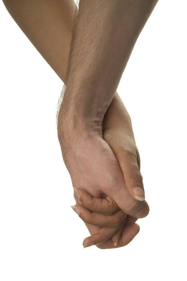 Mãos Da Terra Arrendada Foto de Stock