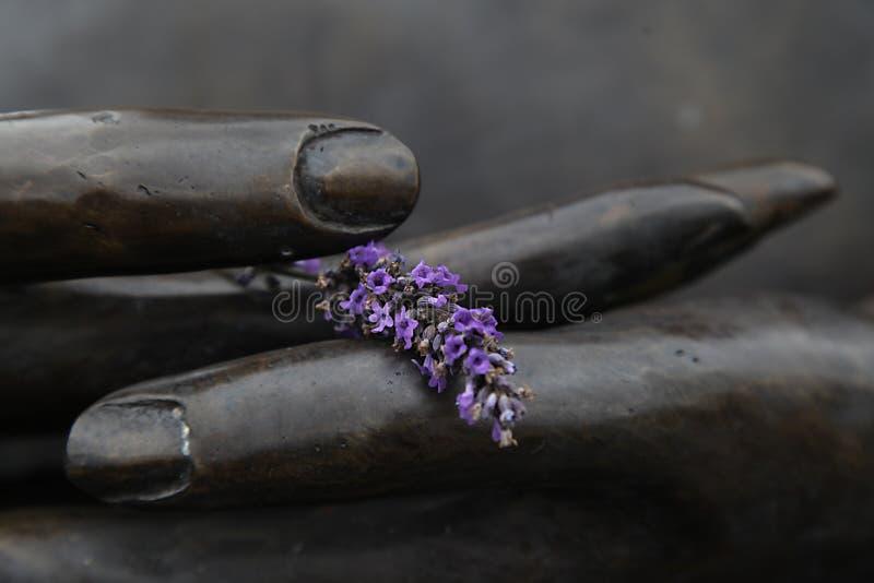 Mãos de Buddha imagens de stock royalty free