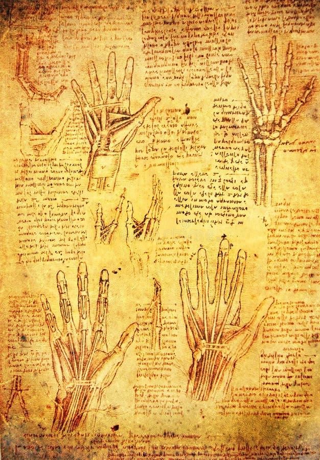 Mãos de Da Vinci ilustração stock