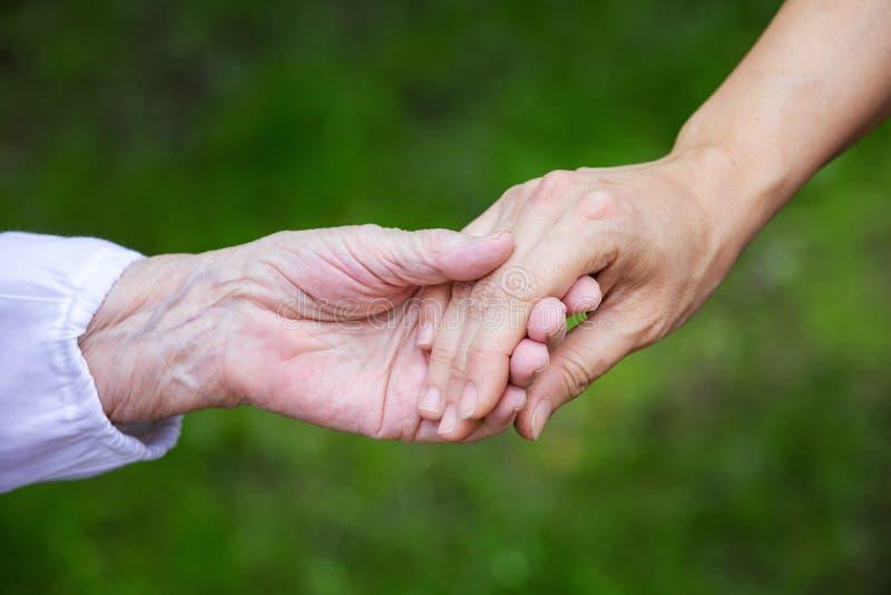 Mãos de mulheres adultas e superiores novas sobre o fundo verde imagem de stock royalty free