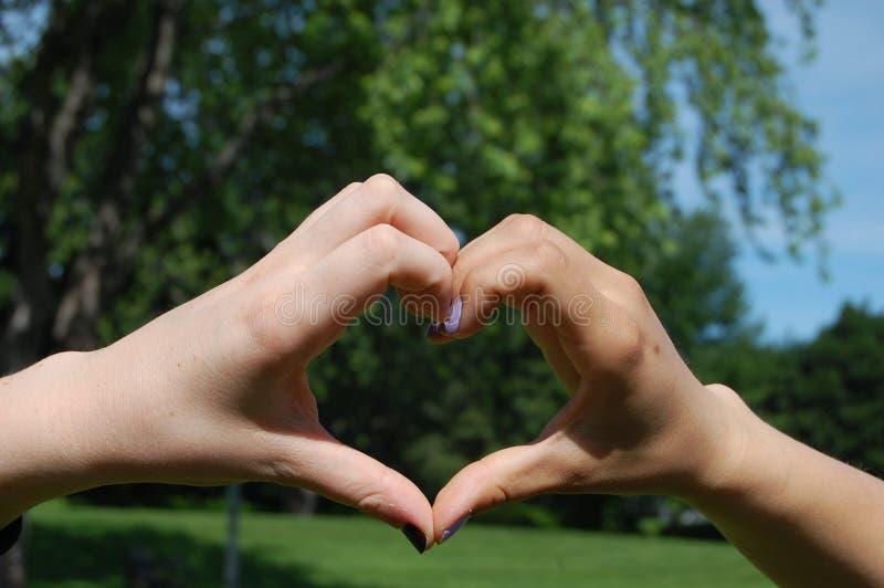 Mãos de Shapped do coração foto de stock