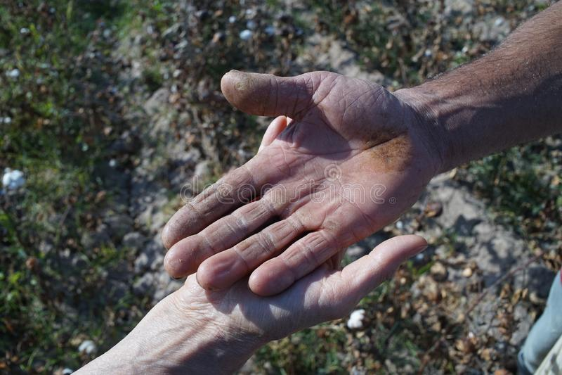 mãos de trabalho Usbequistão Ásia da máquina desbastadora de algodão imagem de stock royalty free