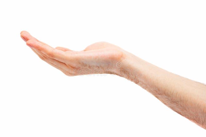 Mãos De Um Objeto Caucasiano Da Posse Do Homem Imagens de Stock Royalty Free