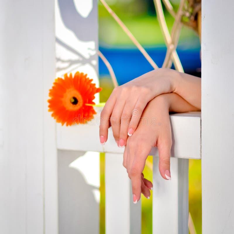 Mãos de uma jovem senhora foto de stock