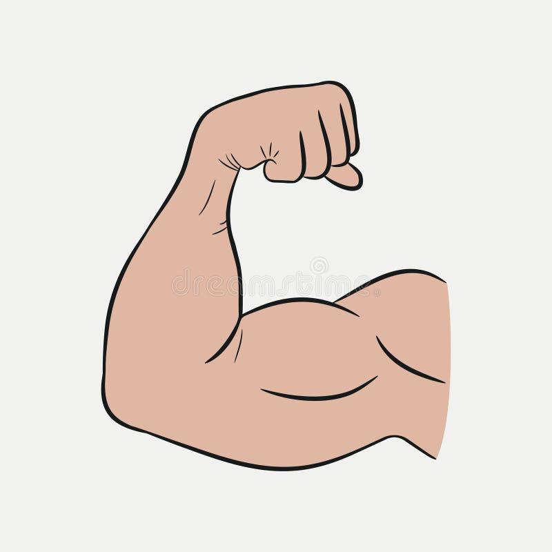 Mãos do bíceps, braço forte, músculos treinados Vetor ilustração royalty free