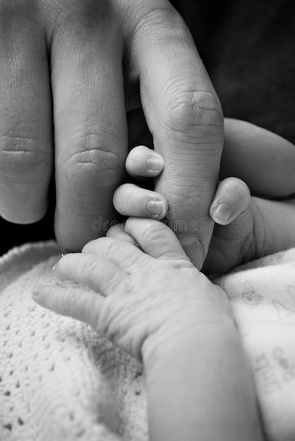 Mãos do bebê e do adulto imagens de stock