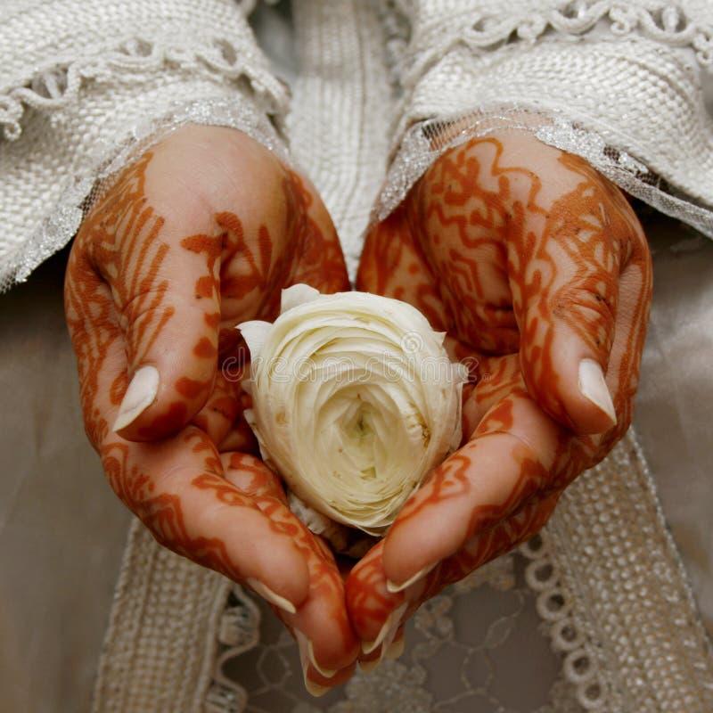 Mãos do Henna imagens de stock royalty free