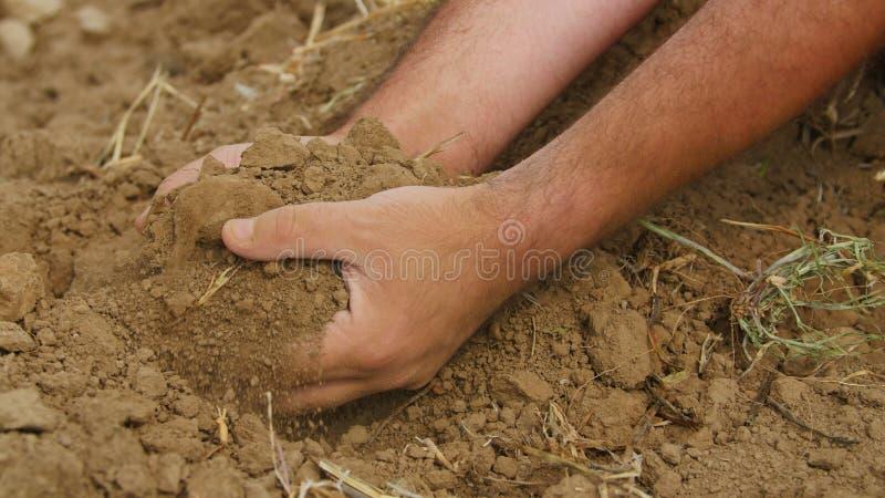 Mãos do ` s do fazendeiro que guardam o solo secado foto de stock