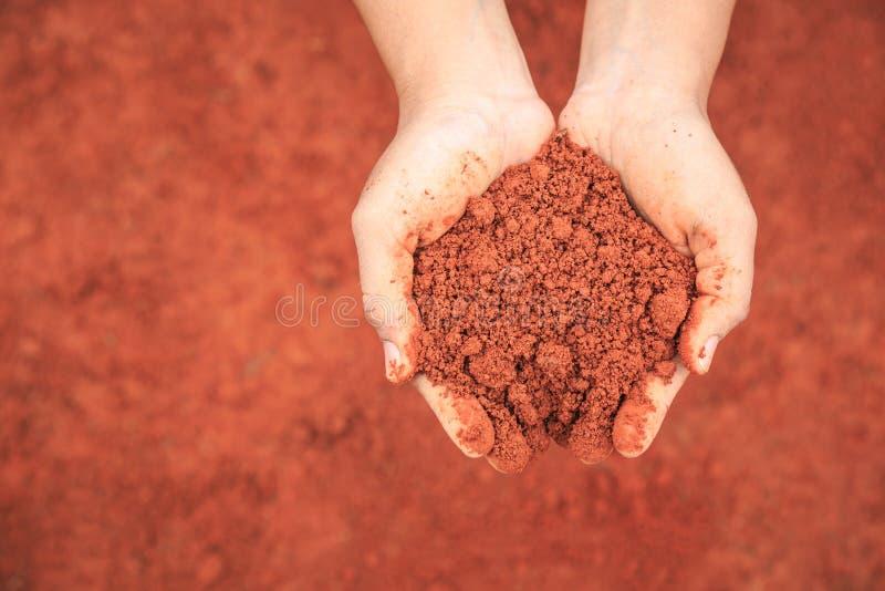 Mãos dos povos que guardam o solo para crescer a planta nova Ecologia e GR foto de stock