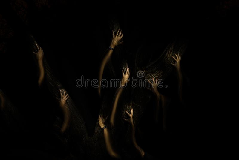 Mãos escuras na escuridão da floresta fotos de stock royalty free