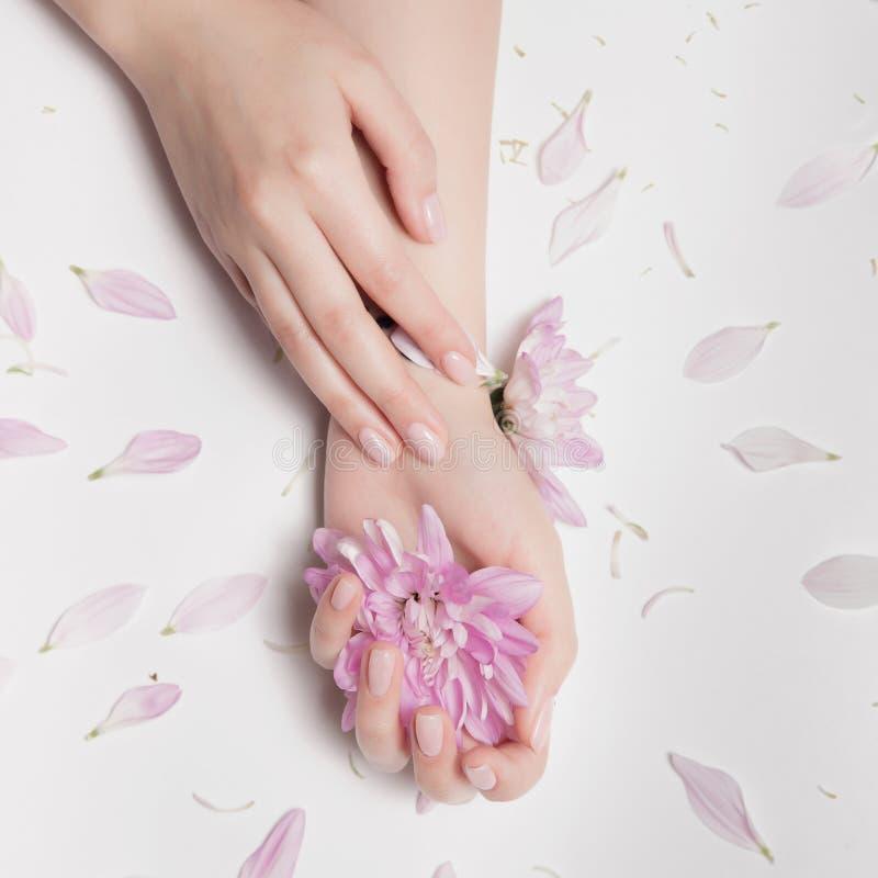 Mãos fêmeas bonitas fotos de stock royalty free