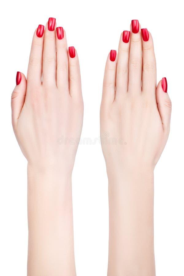 Mãos fêmeas bonitas. fotos de stock