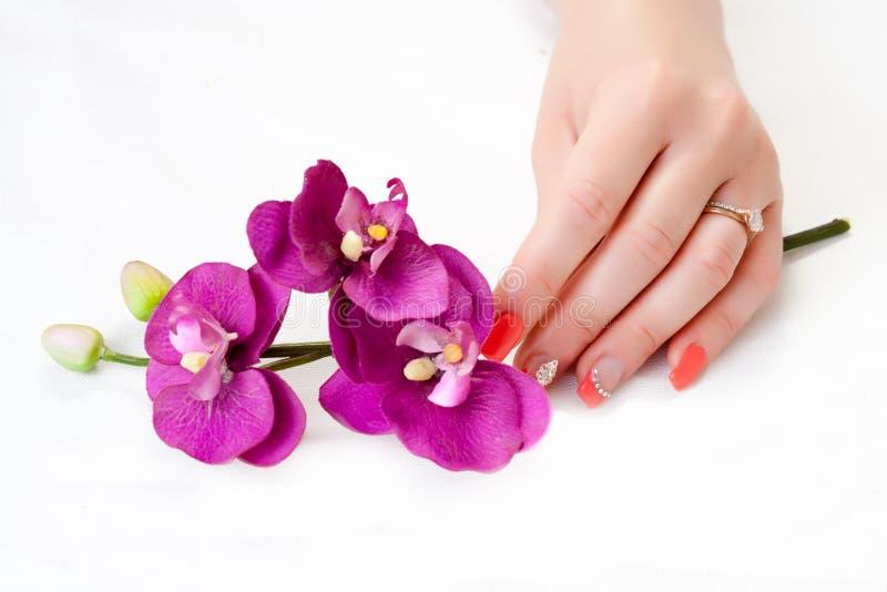 Mãos fêmeas com arte das pétalas e do prego da orquídea fotos de stock