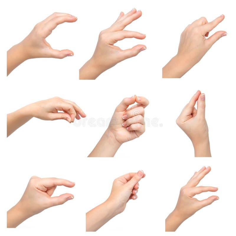 mãos fêmeas que guardam um objeto imagem de stock royalty free
