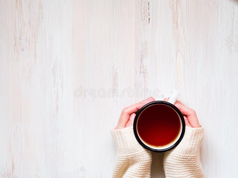 Mãos fêmeas que guardam uma caneca de chá preto quente inverno frio, roupa morna, camiseta foto de stock