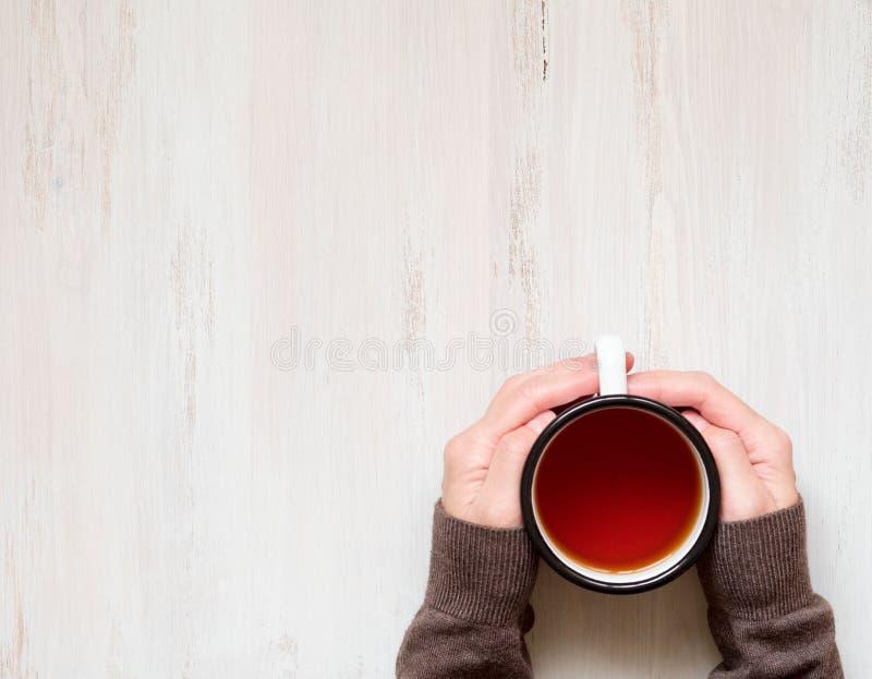 Mãos fêmeas que guardam uma caneca de chá preto quente inverno frio, roupa morna, camiseta imagens de stock royalty free