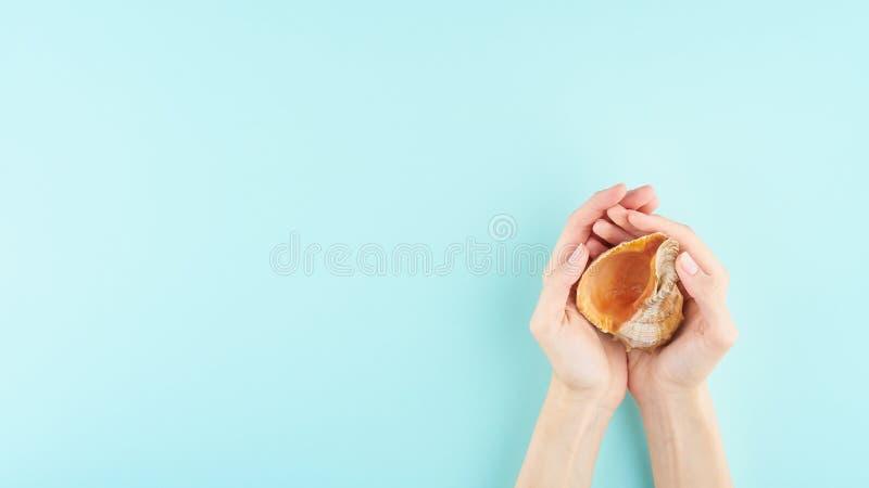 Mãos fêmeas que guardam uma concha do mar grande, o conceito das férias do trópico e o oceano, no espaço azul da cópia da opinião fotos de stock