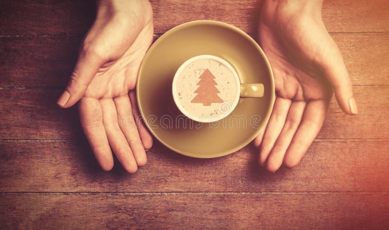Mãos fêmeas que guardam a xícara de café foto de stock royalty free