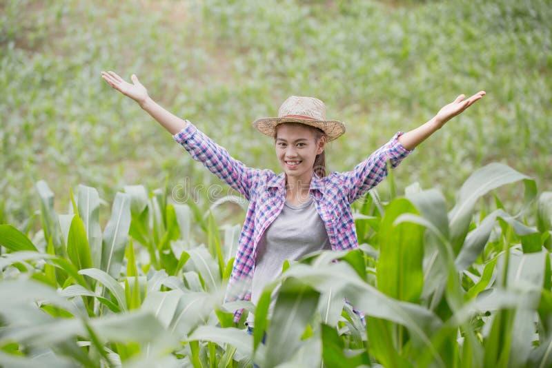 Mãos felizes e postas do fazendeiro novo acima em um campo de milho, o conceito imagens de stock