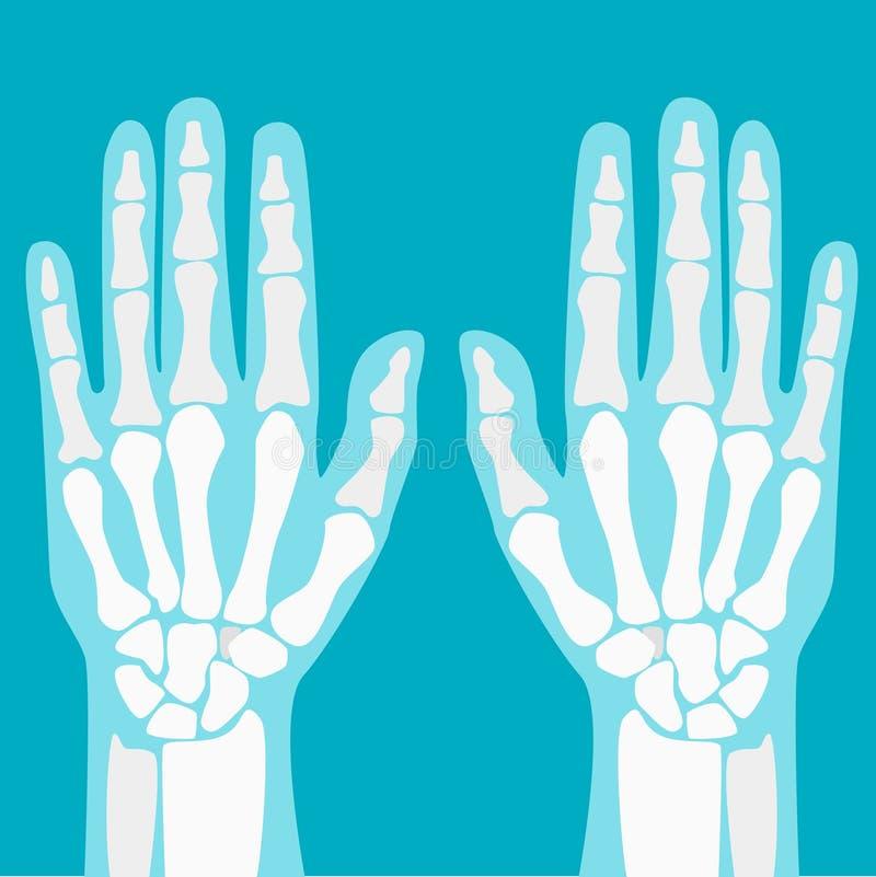 Mãos humanas das junções dos desenhos animados ajustadas Vetor ilustração do vetor