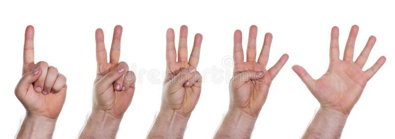 Mãos humanas que contam números de um a cinco imagens de stock