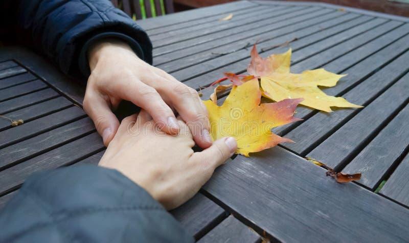 Mãos junto Uma mão amiga a um amigo na tabela áspera do fundo do outono com folhas de bordo imagens de stock royalty free