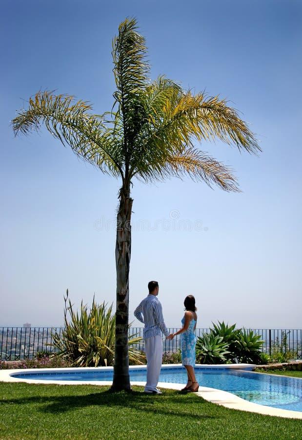 Mãos novas da terra arrendada dos pares sob uma palmeira no sol. foto de stock