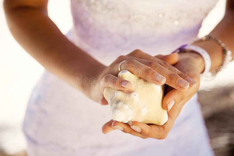 Mãos que guardam uma concha do mar, fundo tropical imagens de stock royalty free