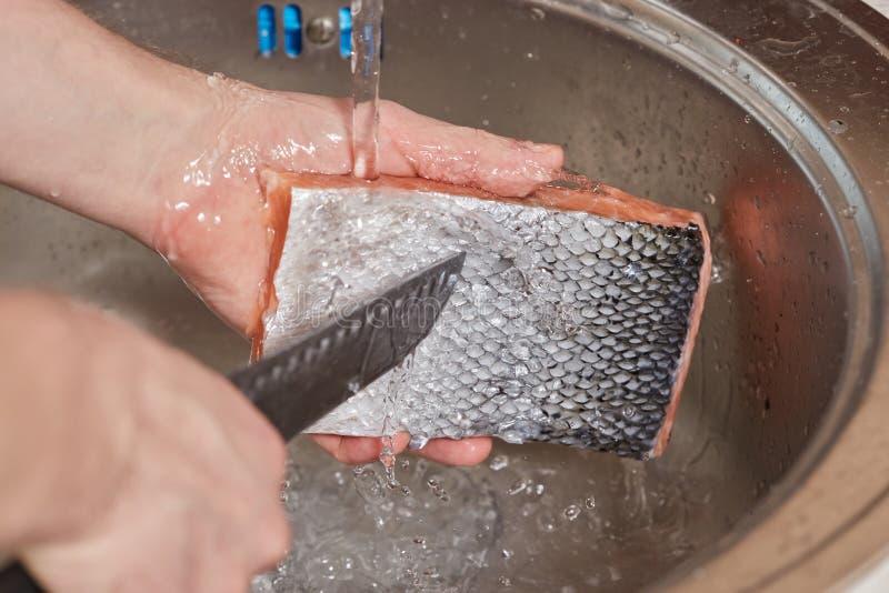 Mãos que lavam e que limpam os peixes salmon sobre a banca da cozinha foto de stock royalty free