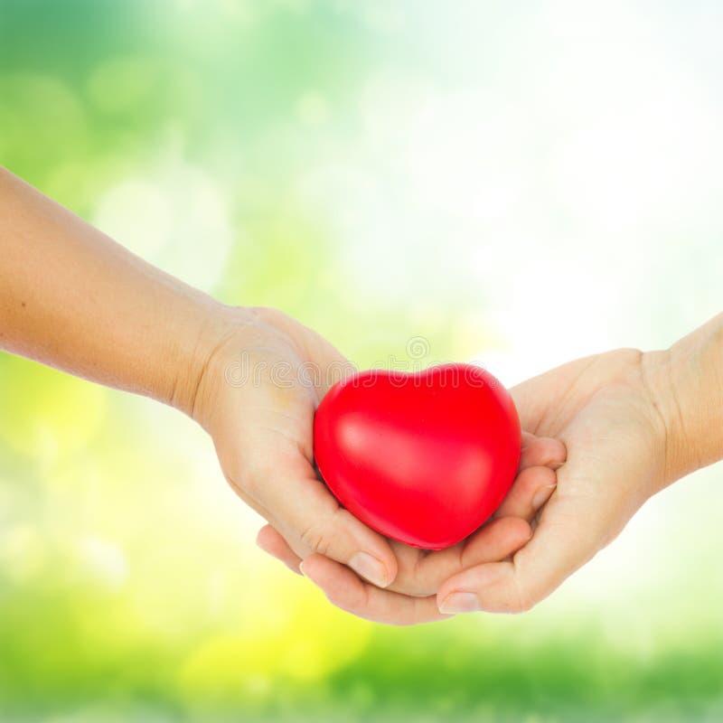 Mãos que prendem o coração vermelho fotos de stock royalty free