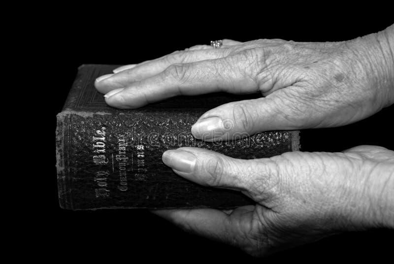 Mãos que prendem uma Bíblia fotos de stock royalty free
