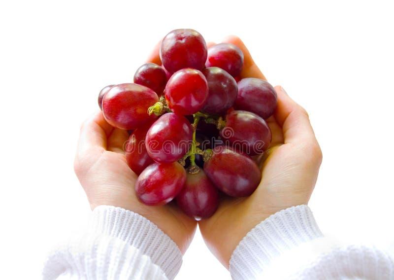 Mãos que prendem uvas imagem de stock royalty free