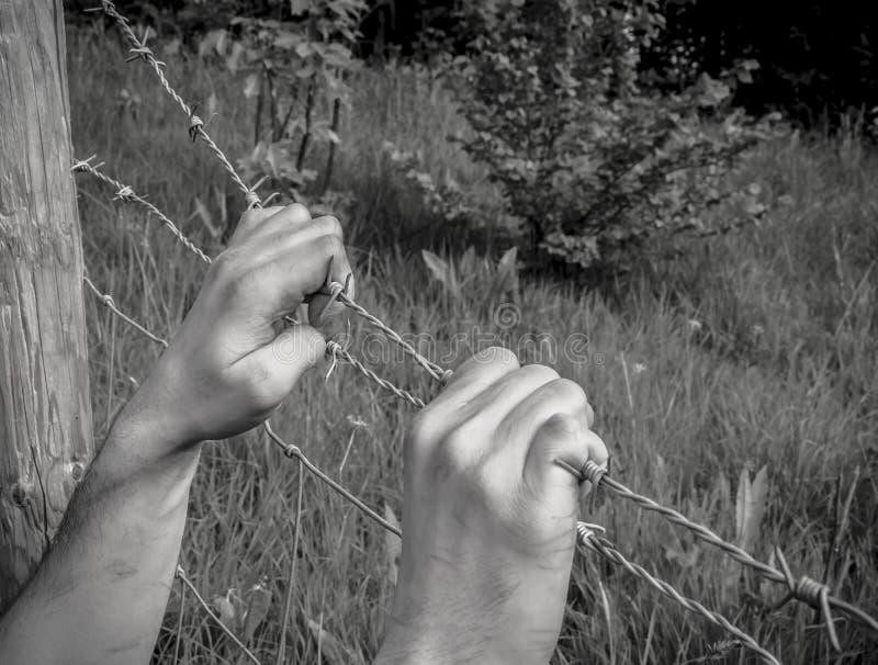 Mãos torturadas que agarram o arame farpado fotos de stock royalty free