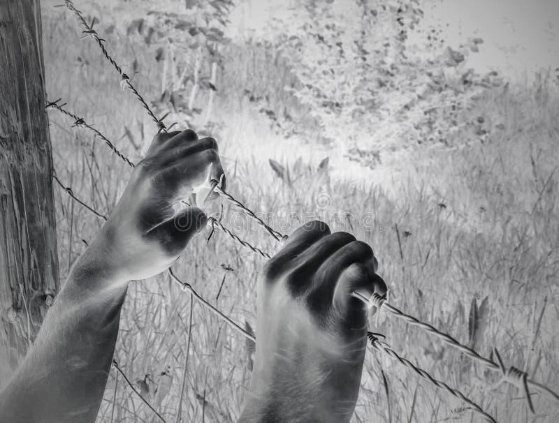 Mãos torturadas surreais artísticas que agarram desesperadamente o arame farpado fotografia de stock royalty free