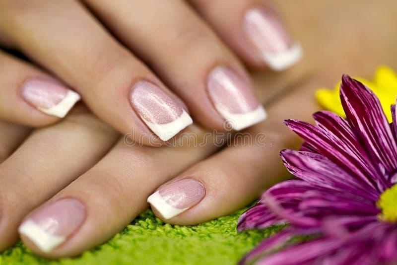 Mãos Well-groomed foto de stock royalty free