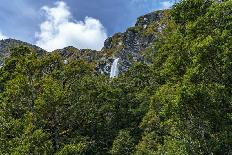 Mächtige Wasserfälle, earland Fälle, Süden, Neuseeland 1 lizenzfreie stockbilder