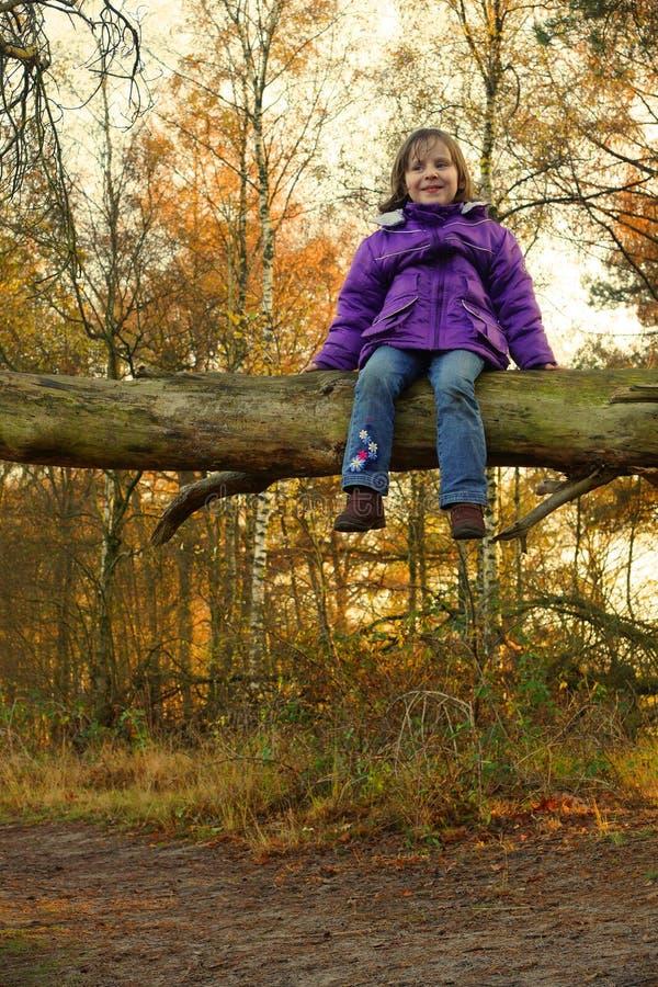Mädchen (4yr) sitzend auf einem Baum lizenzfreie stockfotografie