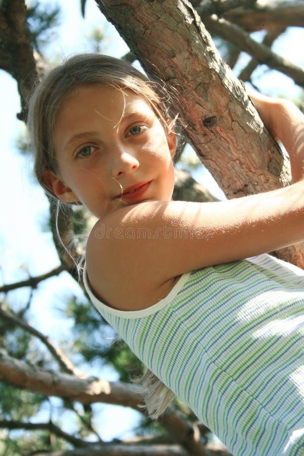 Mädchen auf dem Baum stockfotos