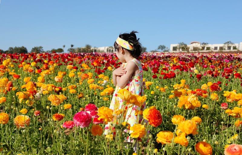 Mädchen auf dem Blumengebiet stockfotos