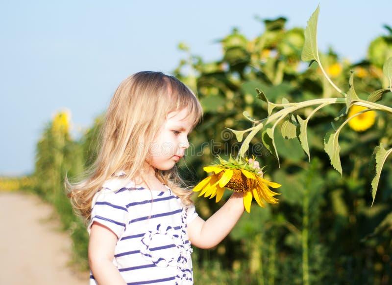 Mädchen auf dem Feld von Sonnenblumen stockfotos