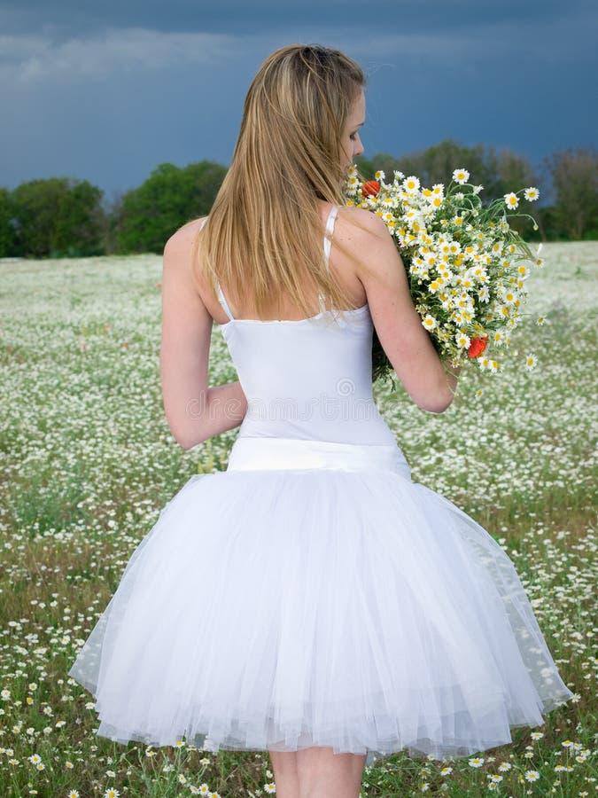 Mädchen auf dem Gänseblümchengebiet lizenzfreie stockfotos