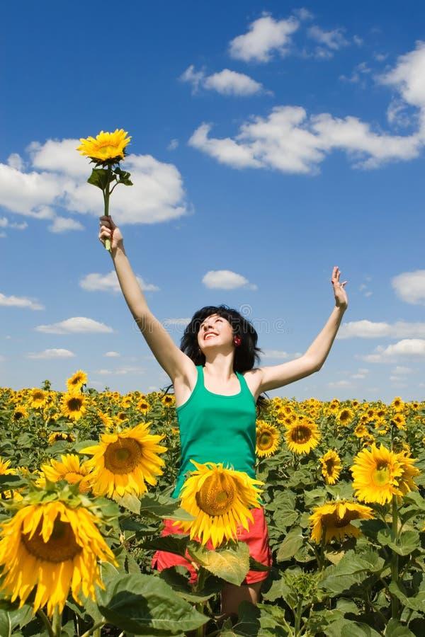 Mädchen auf dem Gebiet der Sonnenblumen stockfotografie