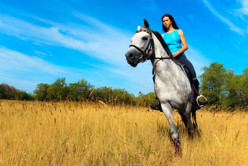 Mädchen auf einem Pferd lizenzfreies stockfoto