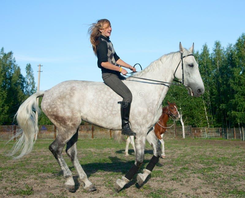 Mädchen auf einem Pferd stockfotos