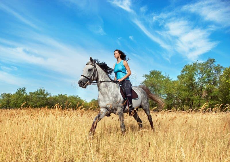 Mädchen auf einem Pferd stockbild