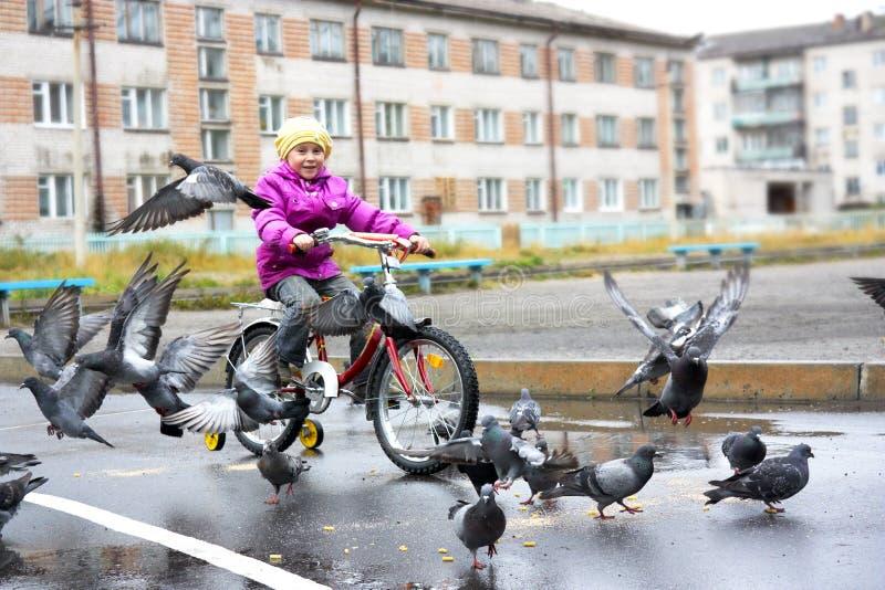 Mädchen auf Fahrrad lizenzfreies stockbild