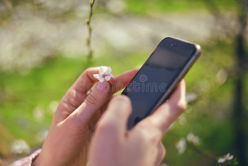 Mädchen benutzt ihren Handy im Freien, nahes hohes Sonniger Tag Gerade ein geregnet Schöner Obstgarten stockbilder