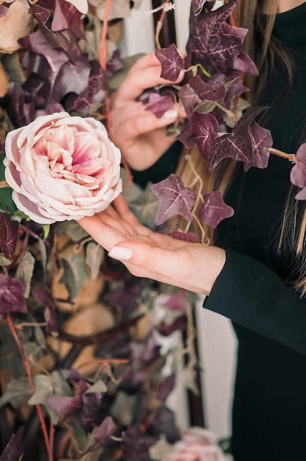 Mädchen berührt blühende Niederlassung mit der Hand Rosen zu Hause Frühlingsblüte der Sinnlichkeit Berühren Sie die Zartheit der  lizenzfreies stockfoto