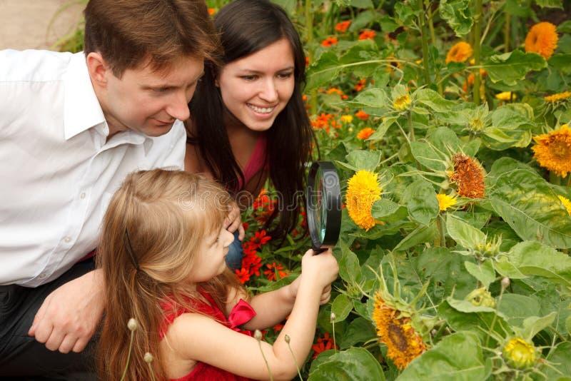 Mädchen betrachtet Blume mit Muttergesellschaftn durch Lupe lizenzfreies stockfoto